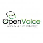 OpenVoice_200-01